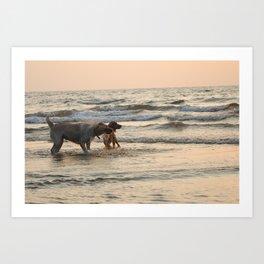Beach beauties Art Print
