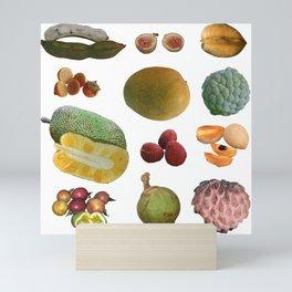 Exotic Fruit Collage Mini Art Print