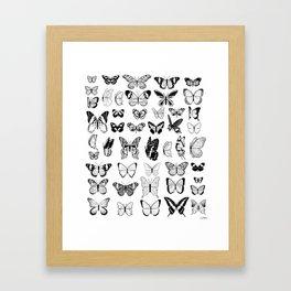 Paruparo Framed Art Print