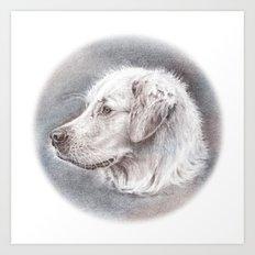 Golden Retriever Dog Drawing Art Print