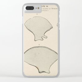 W Sidney Berridge - A Book of Whales (1900) - Figure 12-13: Tympanic Bones and Shoulder Blades Clear iPhone Case