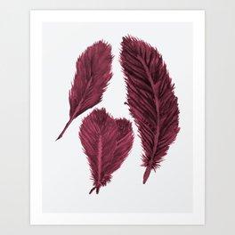 Feather Collection - bordeux Art Print