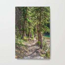 Fairy Lake, Gallatin County, MT Metal Print