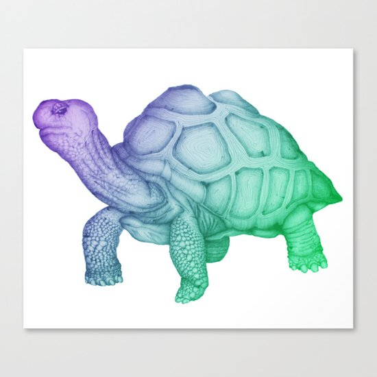Ombre George Canvas Print