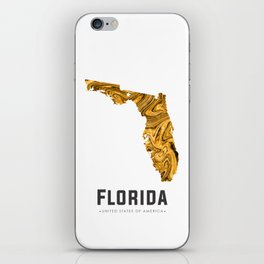 Florida - State Map Art - Abstract Map - Brown iPhone Skin