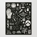 Curiosities: Bone Black by camillechew