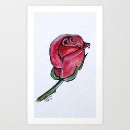 Solitary Rose Art Print