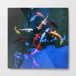 Carp fish Koi  Metal Print