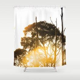 Hobart, Tasmania Shower Curtain