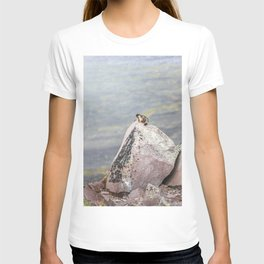 Extremal Groundhog  or King of the Mountain T-shirt