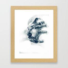 Picturesque Framed Art Print