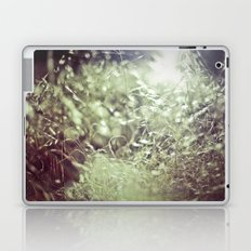 Scatter Laptop & iPad Skin