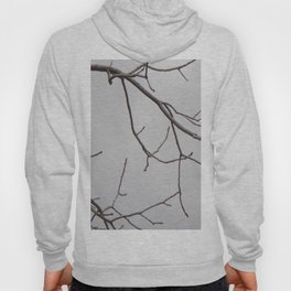 Cold Grey Sky Behind Leafless Tree Branches Hoody