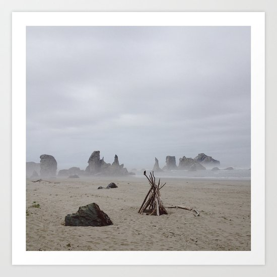 Bandon Beach Bird Art Print