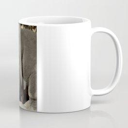 Southern White Rhinoceros, San Antonio Zoo Coffee Mug