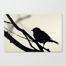 Silhouetted Bird Canvas Print