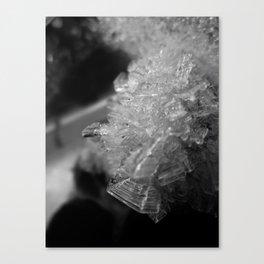 Banana Ice No. 1 Canvas Print