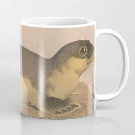 Vintage Illustration of a Harbor Seal (1874) Coffee Mug