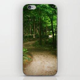 Down A Path iPhone Skin