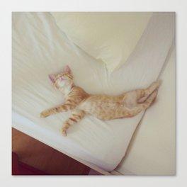 Dancing Kitten Canvas Print