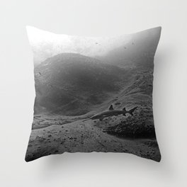 Roca Partida Throw Pillow