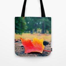 Autumn details Tote Bag