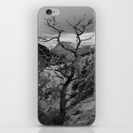Withered Tree on top of Mountain Range, Big Bend - Landscape Photography iPhone Skin