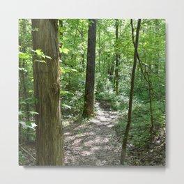 downhill through the trees Metal Print