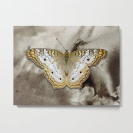 Yellow White Butterfly Modern Country Modern Cottage Chic A495 Metal Print