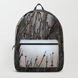 Chickadee in a Bush Backpack