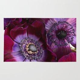 Anemone Coronaria Rug