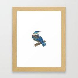 Mandala Tui from NZ Bird Collection Framed Art Print