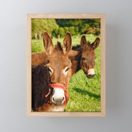 Two donkeys Framed Mini Art Print