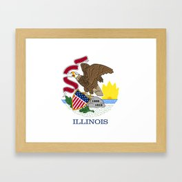 State flag of Illinois Framed Art Print