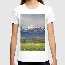 Green field with snowy alps T-shirt