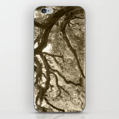 WaterOak iPhone & iPod Skin