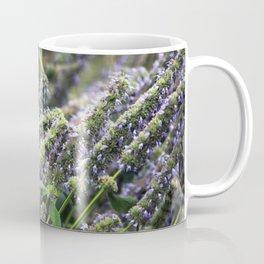 Longwood Gardens Autumn Series 413 Coffee Mug