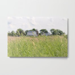 Country Daydream Metal Print