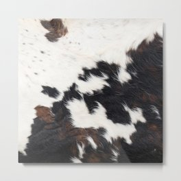 Brown Cowhide Metal Print