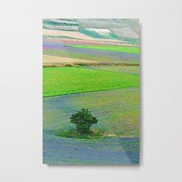 A tree between flowers of lentil Metal Print