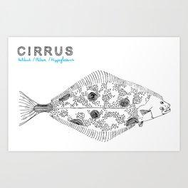 Cirrus/Halibut Art Print