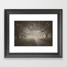 Avenue of Oaks Framed Art Print