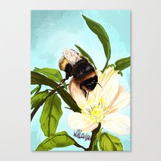 Bee on flower 4 Canvas Print