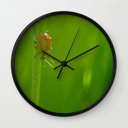 Making bugs Wall Clock