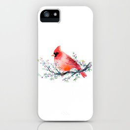 Watercolor red cardinal on berry branch iPhone Case