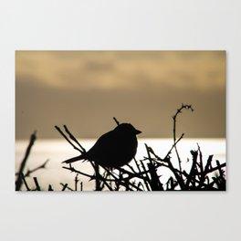 sunset bird silhouette Canvas Print