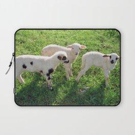 Three Cute Spring Lambs Laptop Sleeve