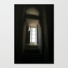 """Through the Window"" Canvas Print"