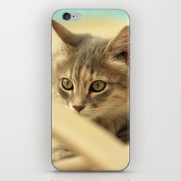pussy at vacation iPhone Skin