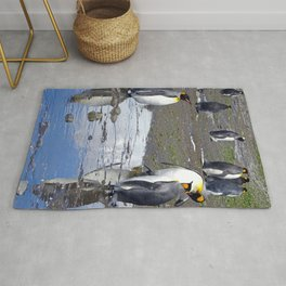 King Penguin Reflection Rug